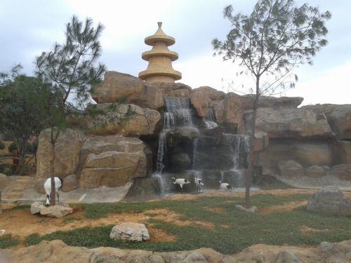 杭州野生动物园 首先,我想郑重的声明:我是男的