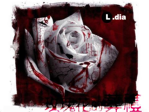玫瑰花的葬礼__