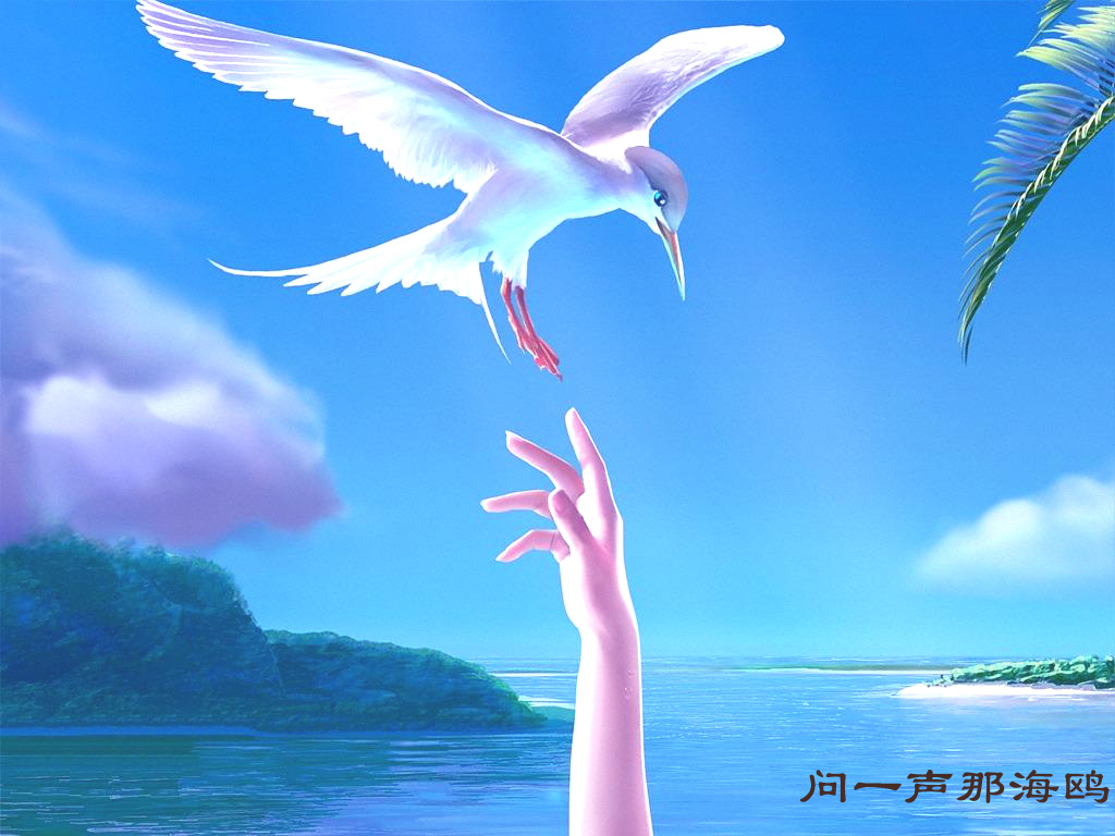 青岛海边海欧图片